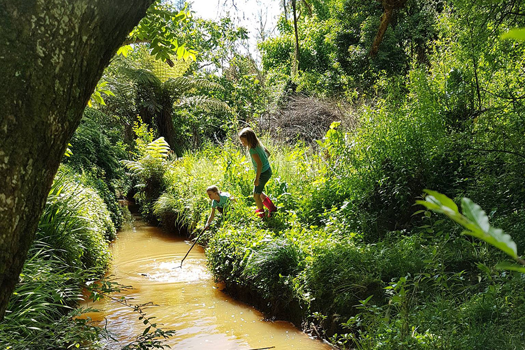 A photograph of a stream, with lush greenery around it, with two children playing near the stream